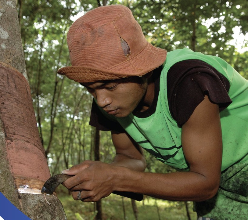IOM and SEI launch new research on how climate-related migration drives forced labour
